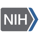 National Institutes of Health — Chief Officer for Scientific Workforce Diversity