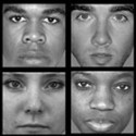 Harvard Study Finds Different Neural Activity When Subjects View Black and White Faces