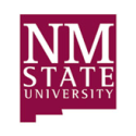 Cheryl Henderson Is Among the Finalists for Key Fundraising Post at New Mexico State University