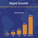 The African-Born U.S. Population Is a Highly Educated Group