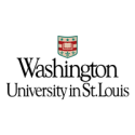 Washington University in St. Louis — Vice Provost for Faculty Affairs and Diversity