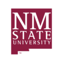 New Mexico State University — Assistant Professor, Critical Composition and Writing Studies