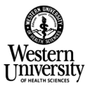 Western University of Health Sciences  — Vice President for Humanism, Equity, and Anti-Racism