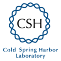 After Racist Comments, Cold Spring Harbor Laboratory Ends Affiliation With James D. Watson