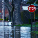 Study Finds a Racial Disparity in Homeownership in Flood-Prone Areas