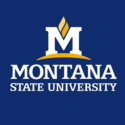 Montana State University — Dean for Global Engagement and International Programs