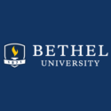 Bethel University — Vice President of Diversity, Equity, and Inclusion